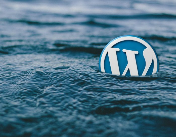 Plugin giả mạo web WordPress